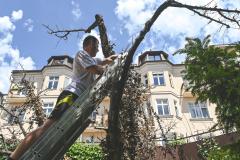 Hornbach opäť pomohol skrášliť Slovensko