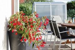 Pri dome je umiestnená terasa s jedálenským stolom, ktorá je spojená s odpočinkovou plochou pri bazéne