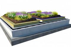 Skladba strechy s polointenzívnou vegetáciou. Hrúbka vegetačnej vrstvy pre zakoreňovanie sa pohybuje medzi 200-300 mm. Dosky Isover Flora tvoria asi polovicu tejto výšky