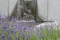 Minimalisticky poňatý vodný prvok skvele oživí mestskú a modernú záhradu