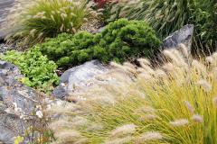 Klasické vodné jazierka síce v záhrade nenájdete, ale iste postrehnete dômyselné radenie kameňov, ktoré evokujú plynúci potok alebo vytvárajú prírodné útvary s dažďovou vodou. To všetko v nevyhnutnom sprievode najrôznejších druhov okrasných tráv
