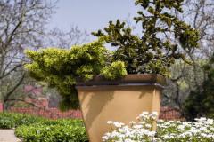 Na veľkorysej terase je dostatok priestoru pre mohutné kvetináče s ihličnatým osadenstvom. Nezaobídu sa bez pravidelnej zálievky