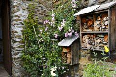 Mohutné stredoveké múry zjemňuje na svoje pomery veľmi urastená drobnokvetá ruža The Fairy. Pri jej päte je vysadená mladšia voňavá biela ruža Innocencia. Podrast tvoria bylinky a drobné kvety rimbaby, medzi kameňmi sa prediera striebrolistá perovskia