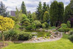 Menšie jazierko (12 m³) obklopuje breh vytvorený zo štrku a doplnený zbierkou drevín