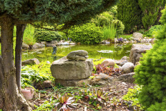 Kamene sú veľká záľuba manželov Vašákovcov. Ich starostlivý výber dotvára štýl záhrady