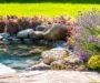 Ako založiť záhradné jazierko